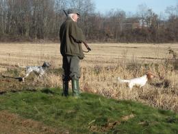 addestramento cani con sparo
